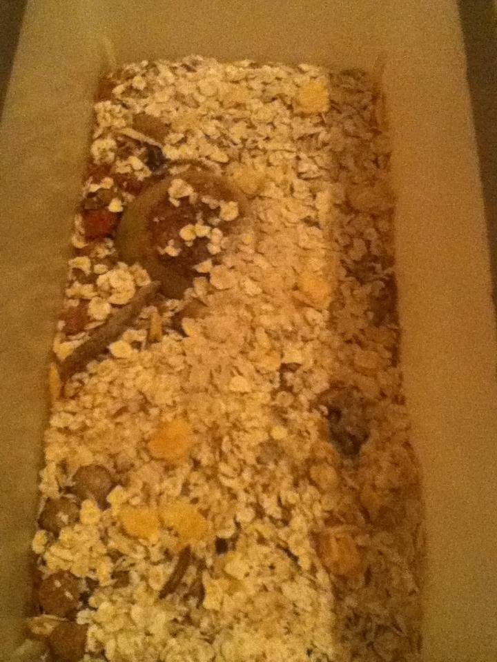 Mealworm Colony 2015! [Picture Thread] - Page 10 IMG_3412_zpsbxohockb