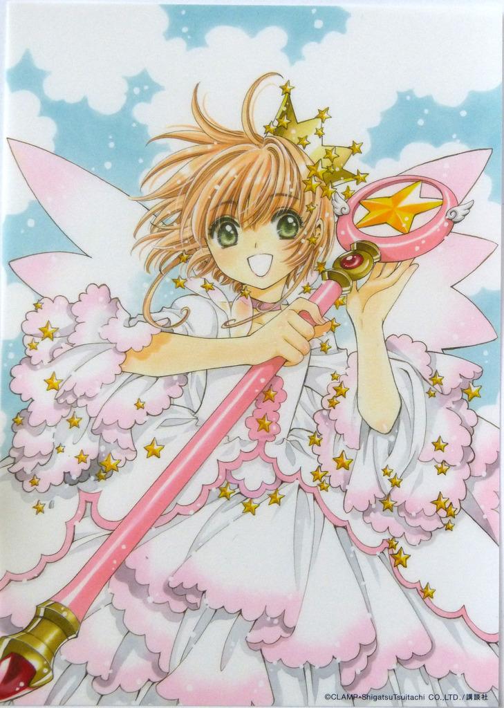 Nouvelle édition de Card Captor Sakura en 9 volumes - Page 6 P1150693_zpslivocaix