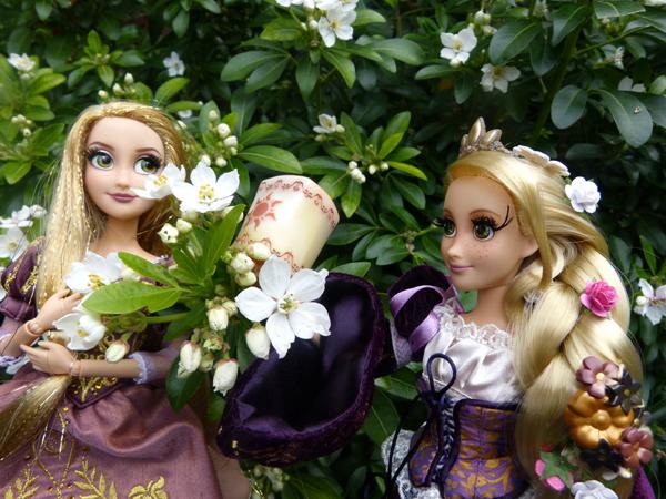 Disney Fairytale Designer Collection (depuis 2013) - Page 38 P1160405_zpstnyvovpz