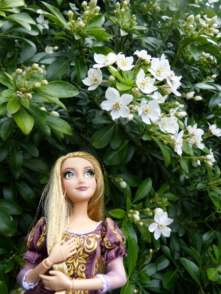Disney Fairytale Designer Collection (depuis 2013) - Page 37 P1160411_zpsvqzvy12a