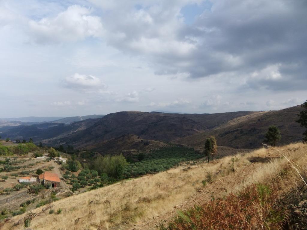 Douro - Até ao Douro AtaoDouro022_zps21ee7d65