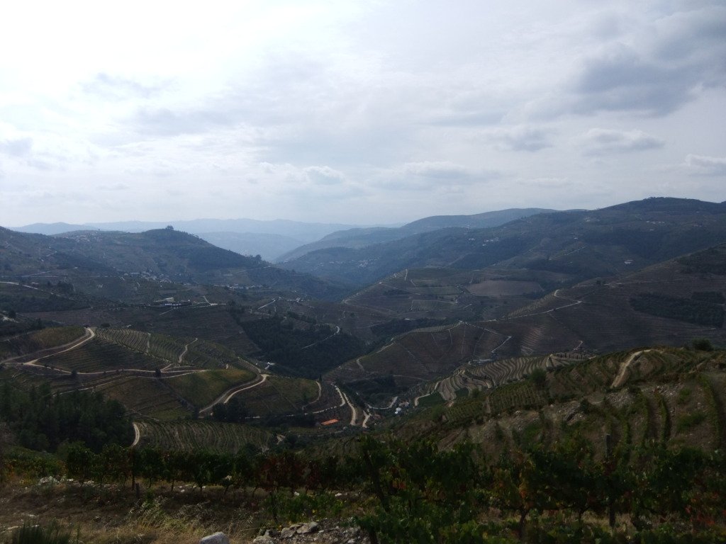Douro - Até ao Douro AtaoDouro039_zps9efb3d67