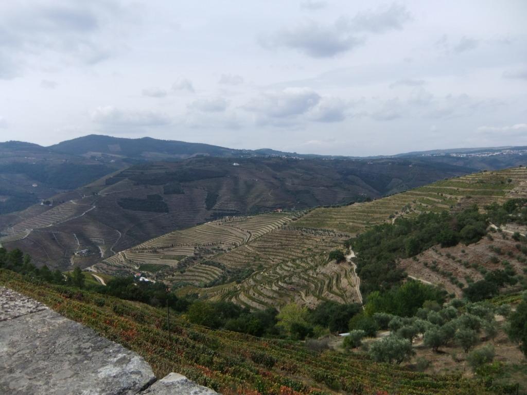 Douro - Até ao Douro AtaoDouro040_zps60650494