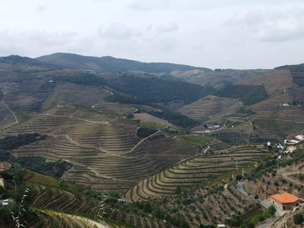 Douro - Até ao Douro AtaoDouro043_zpsd01d9ff8