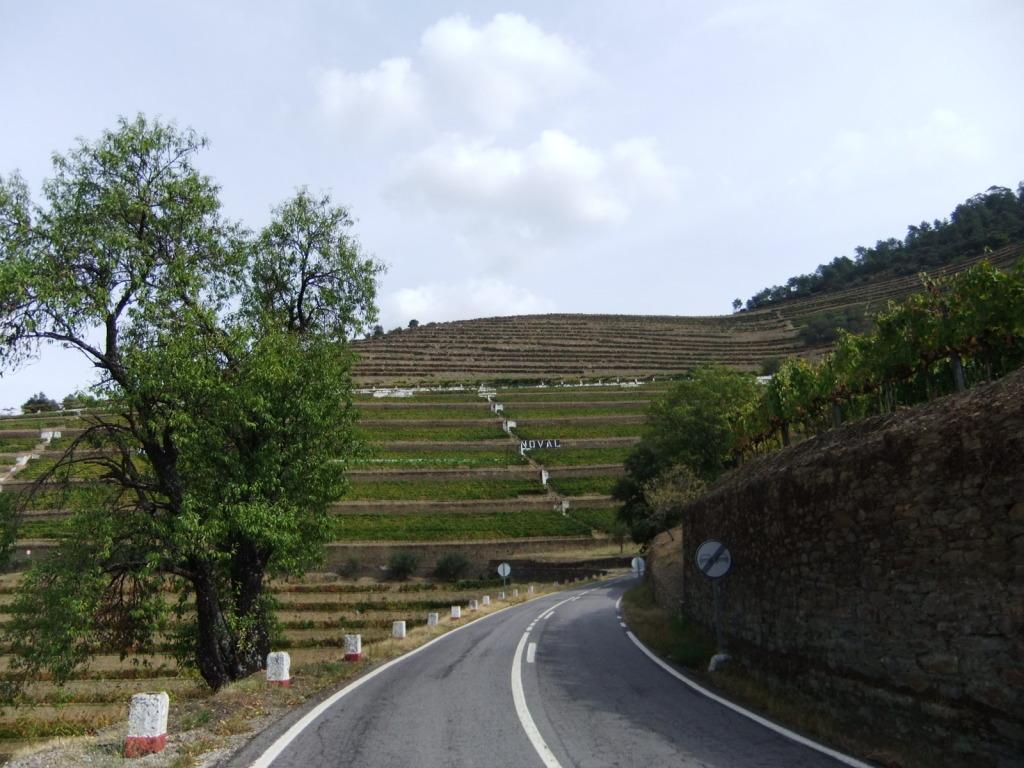 Douro - Até ao Douro AtaoDouro046_zpsc32423a9