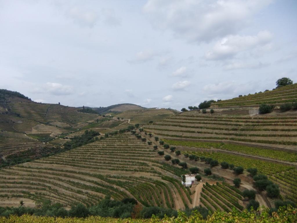Douro - Até ao Douro AtaoDouro047_zpsd56dcf61