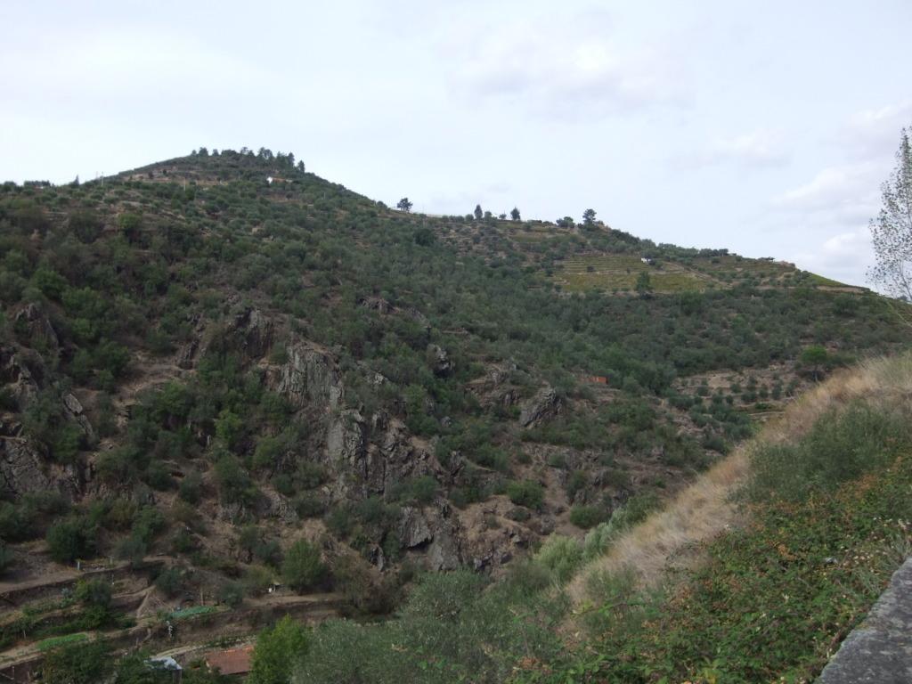 Douro - Até ao Douro AtaoDouro051_zpsf1e0ccb7
