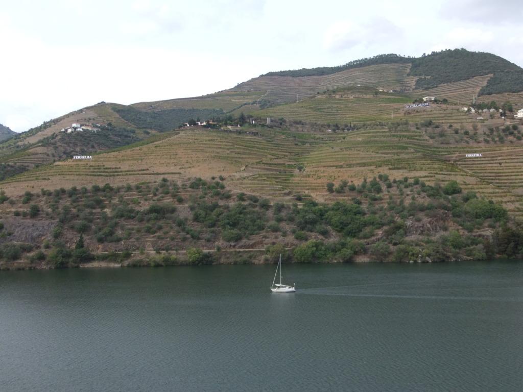 Douro - Até ao Douro AtaoDouro060_zps0e024e42