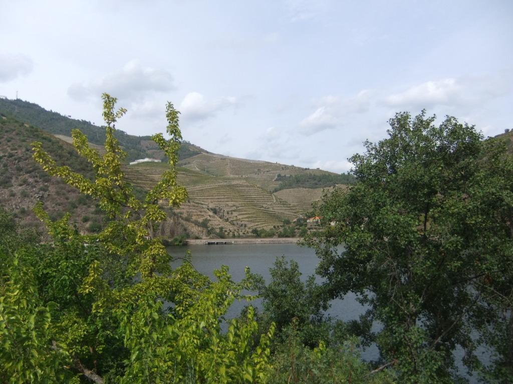 Douro - Até ao Douro AtaoDouro064_zps6f5b73f3