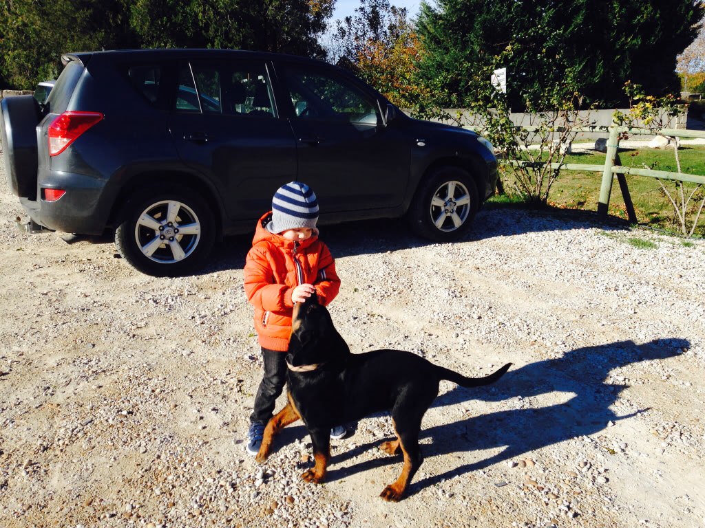 Des enfants et des chiens... - Page 2 541d9f3e59b2298a9ebad68ad1c73638_zpsbc505cb2