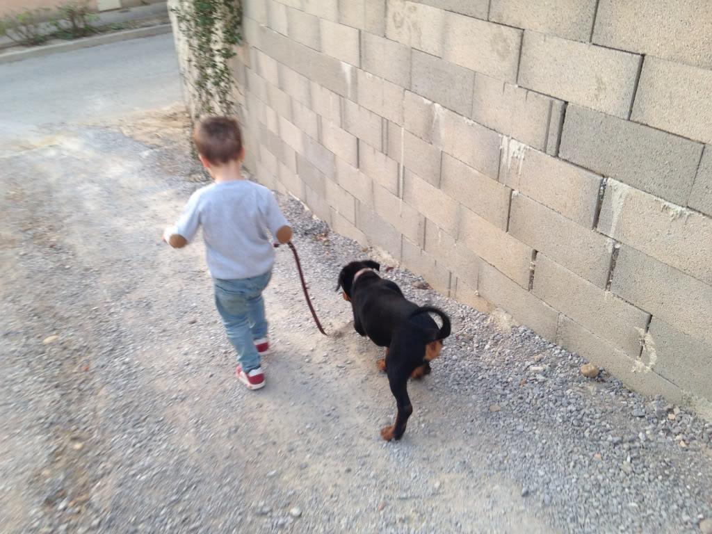 Des enfants et des chiens... - Page 2 Cd86c580f187399e0a42e983e746d73e_zps5b9f2b86