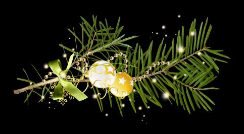 Новый Год 2015! Sakele_zps096bfa72