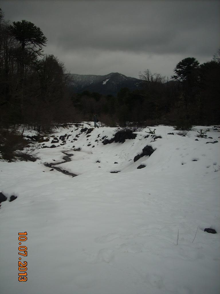 Algunas fotos de distintos viajes DSCN1575_zps6ef5a3fa