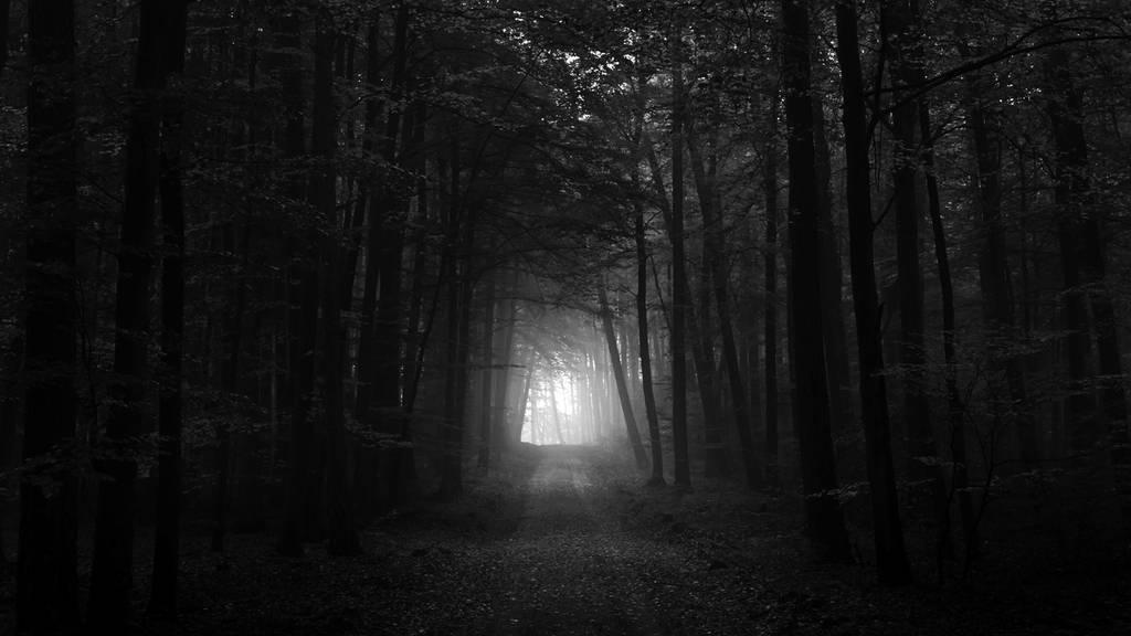 devil my cry 6403511-dark-forest-wallpaper_zpsbs08gn3y