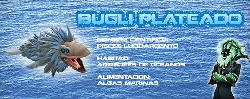 Bugli plateado Bugliplateado_zpsf344f57e