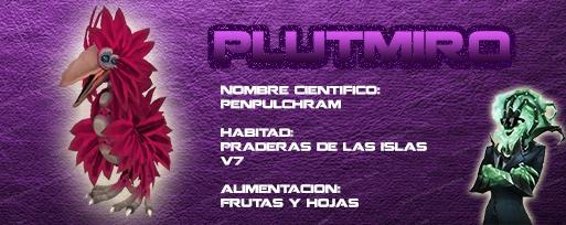 Aves de la isla V7 Plutmiro_zps29626988
