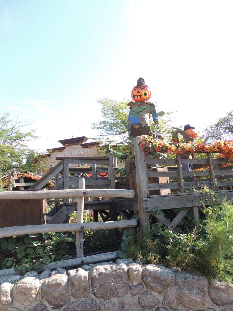 Halloween 2014 - Du 1er Octobre au 2 Novembre - Page 6 DSCN1807_zps4d6e6333