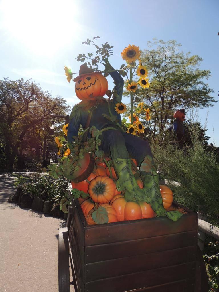 Halloween 2014 - Du 1er Octobre au 2 Novembre - Page 6 DSCN1810_zpsd6cb1d7e