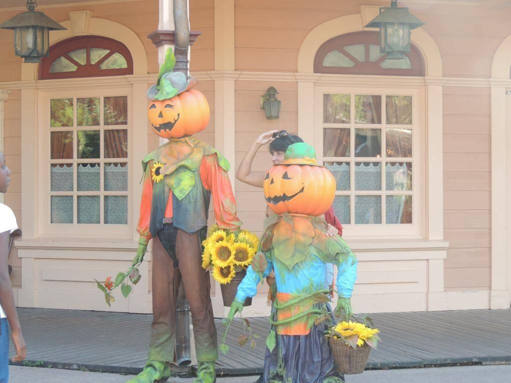 Halloween 2014 - Du 1er Octobre au 2 Novembre - Page 6 DSCN1821_zpsb0046094