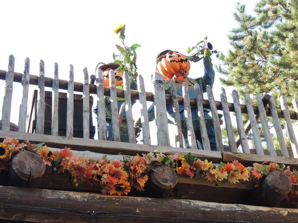 Halloween 2014 - Du 1er Octobre au 2 Novembre - Page 6 DSCN1827_zps01f59e10