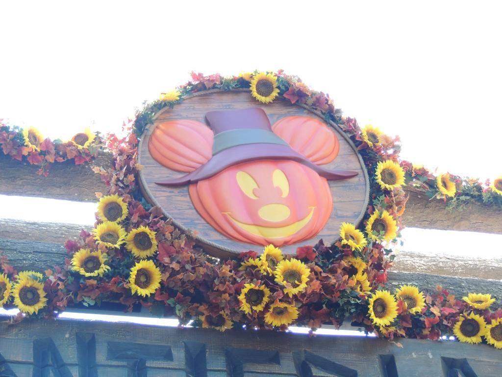 Halloween 2014 - Du 1er Octobre au 2 Novembre - Page 6 DSCN1829_zps182e6dd8