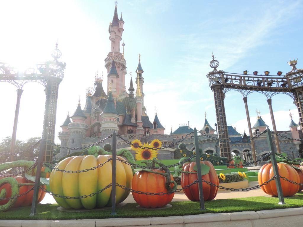 Halloween 2014 - Du 1er Octobre au 2 Novembre - Page 6 DSCN1995_zpsd71c8877
