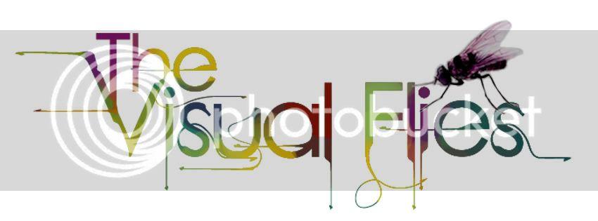 THE VISUAL FLIES! revolotead con nosotros! Cabecerafacebook