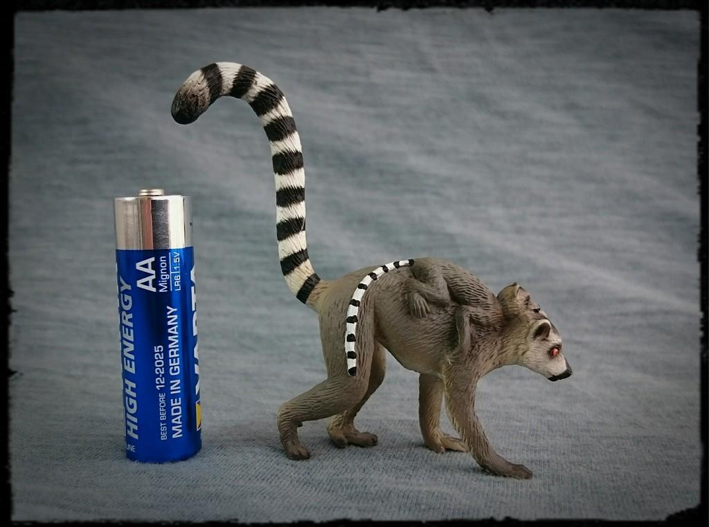 Mojo 2015 - Female Ring-tailed Lemur with baby - Walkaround by Kosta 0_zpskbsvvocm