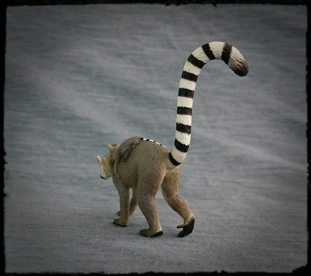 Mojo 2015 - Female Ring-tailed Lemur with baby - Walkaround by Kosta 3_zpsvo98zpfj
