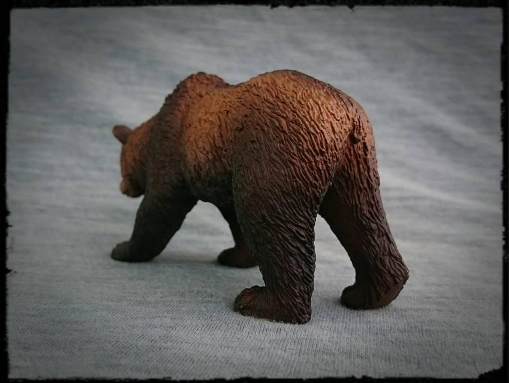 Mojo 2015 - Brown bear - Walkaround by Kosta 3_zpszavicbkl