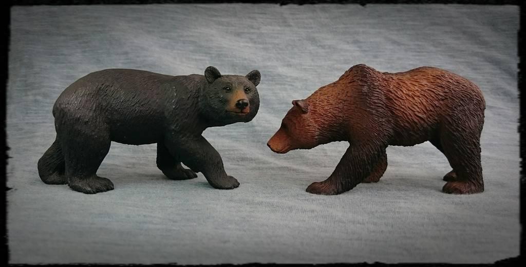 Mojo 2015 - Brown bear - Walkaround by Kosta 9_zpsin3bktag