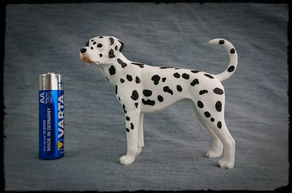 Mojo 2016 - Dalmatian dog - Walkaround by Kosta 0_zps4hwesgzu