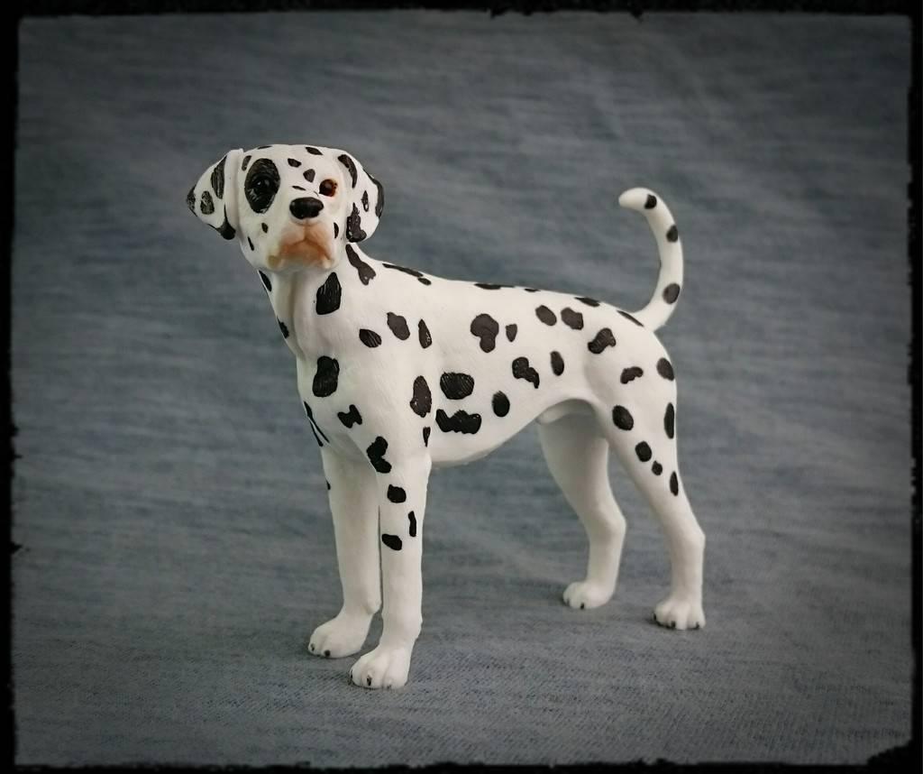 Mojo 2016 - Dalmatian dog - Walkaround by Kosta 2_zpszx8j9kuj