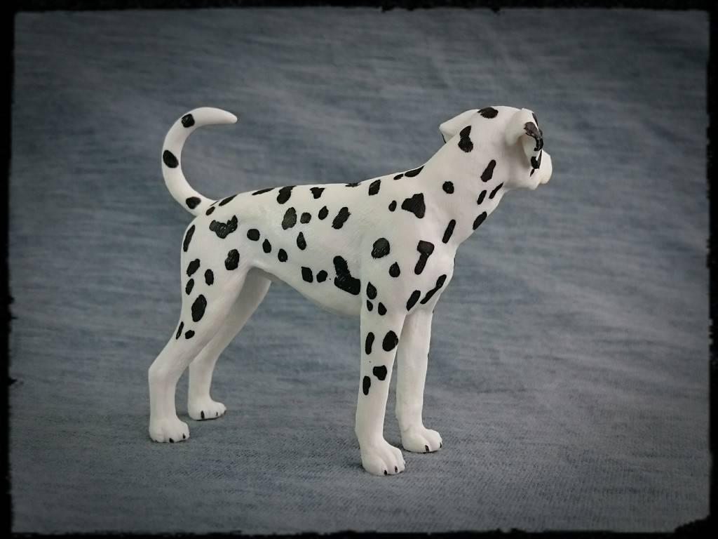 Mojo 2016 - Dalmatian dog - Walkaround by Kosta 4_zpsj68dwqfo