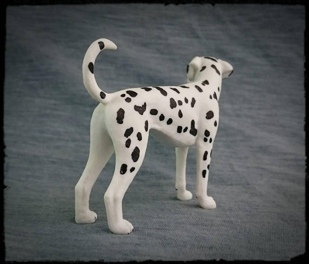 Mojo 2016 - Dalmatian dog - Walkaround by Kosta 5_zps9n8u3vyk