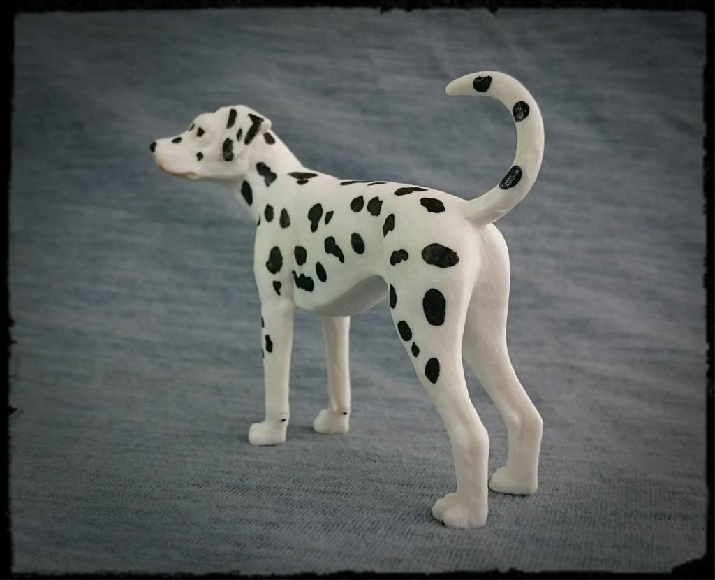 Mojo 2016 - Dalmatian dog - Walkaround by Kosta 6_zps0jeh5is0