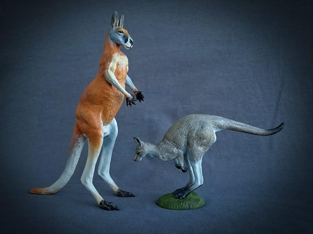 Southlands Replicas - Red Kangaroo Buck, Dingo and Echidna 18_zpschv6j2jj