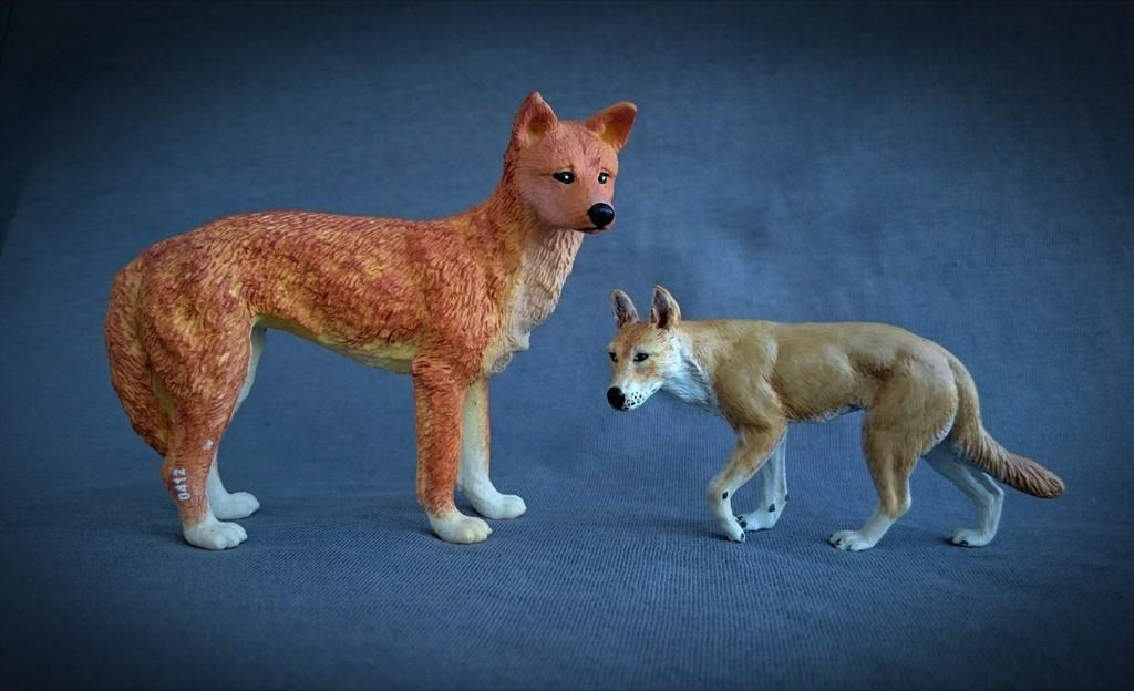 Southlands Replicas - Red Kangaroo Buck, Dingo and Echidna 11_zpsi9qp0oe3