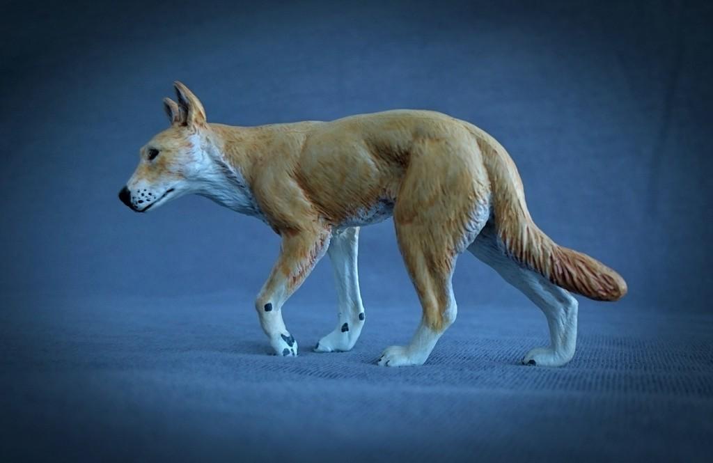 Southlands Replicas - Red Kangaroo Buck, Dingo and Echidna 7_zpstzmuwvfj