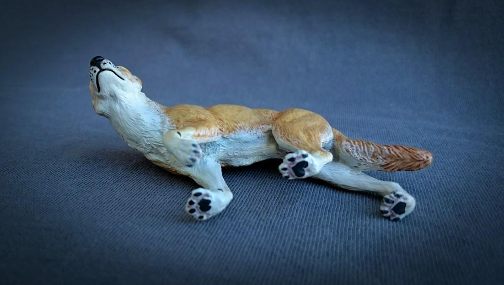 Southlands Replicas - Red Kangaroo Buck, Dingo and Echidna 8_zpssbjibyqf