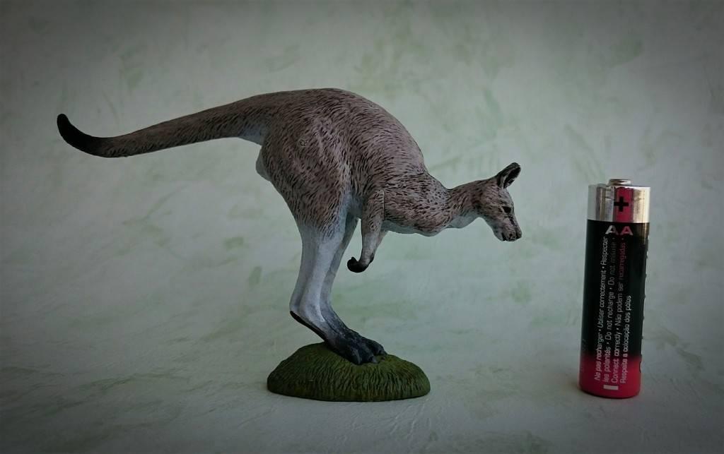 Southlands Replicas - Eastern Grey Kangaroo Hopping 12_zpsu5ug4bx4