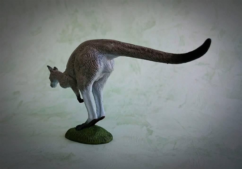 Southlands Replicas - Eastern Grey Kangaroo Hopping 4_zpsluc32ous
