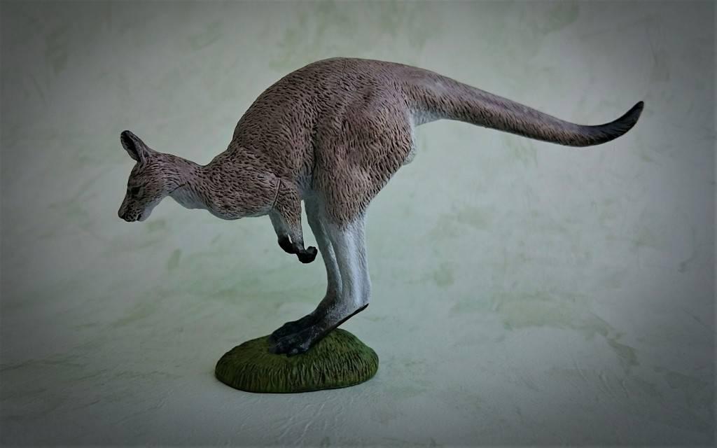 Southlands Replicas - Eastern Grey Kangaroo Hopping 5_zpsnhyhrs1h