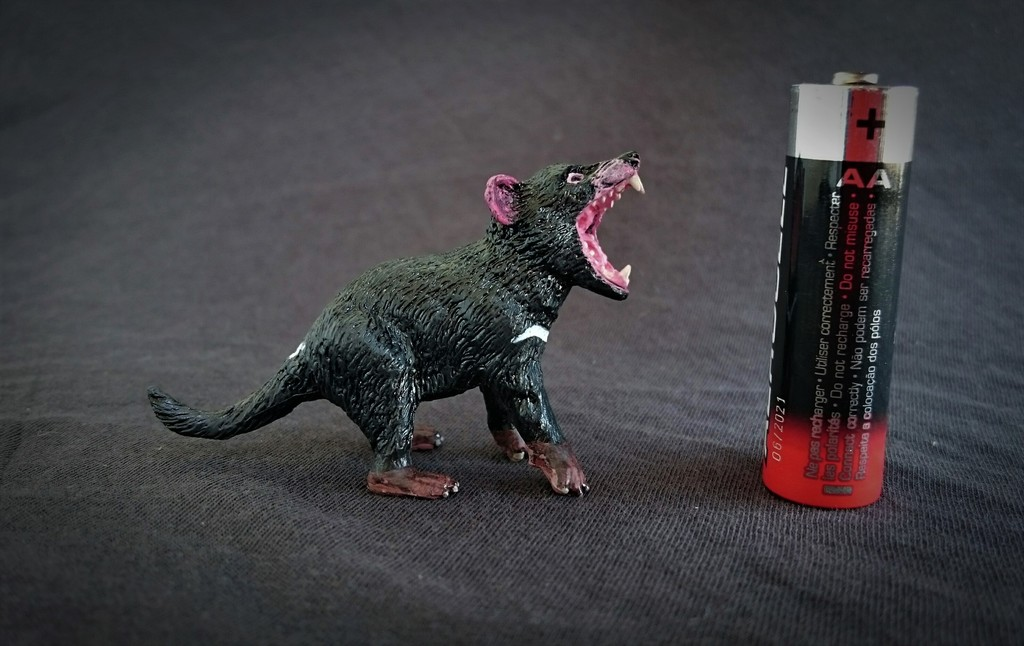 Southlands Replicas - Tasmanian Devil Male 12_zpsfzhugbfq