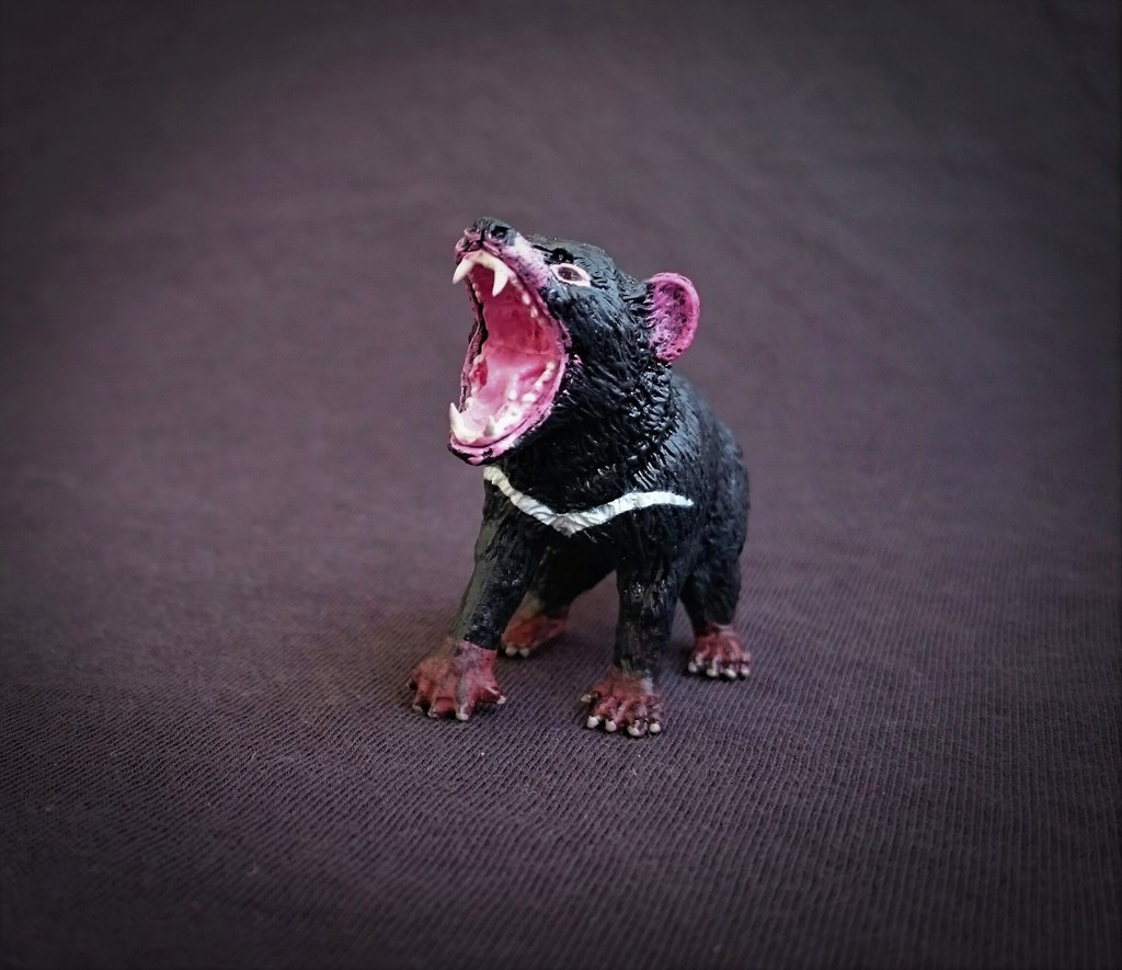 Southlands Replicas - Tasmanian Devil Male 6_zps1x3z5plo