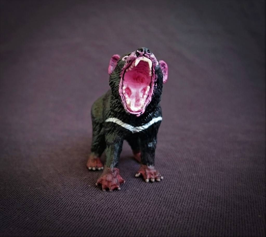 Southlands Replicas - Tasmanian Devil Male 7_zpslb5lkjmv