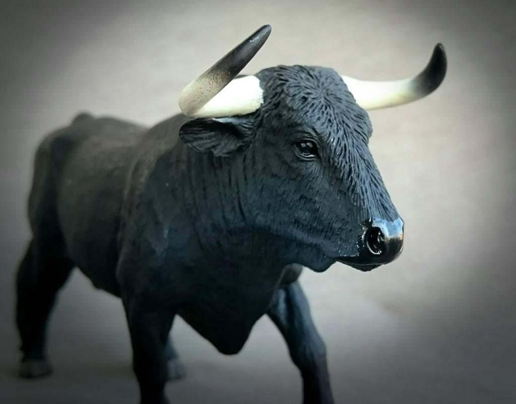 MOJO 387224 Spanish Fighting Bull - Walkaround by Kosta 22_zps5uwviott