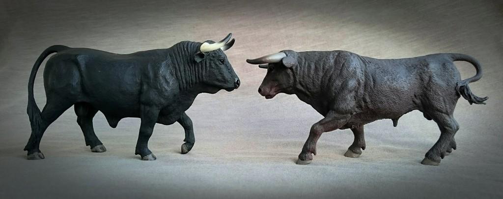 MOJO 387224 Spanish Fighting Bull - Walkaround by Kosta 25_zpsckhw522h