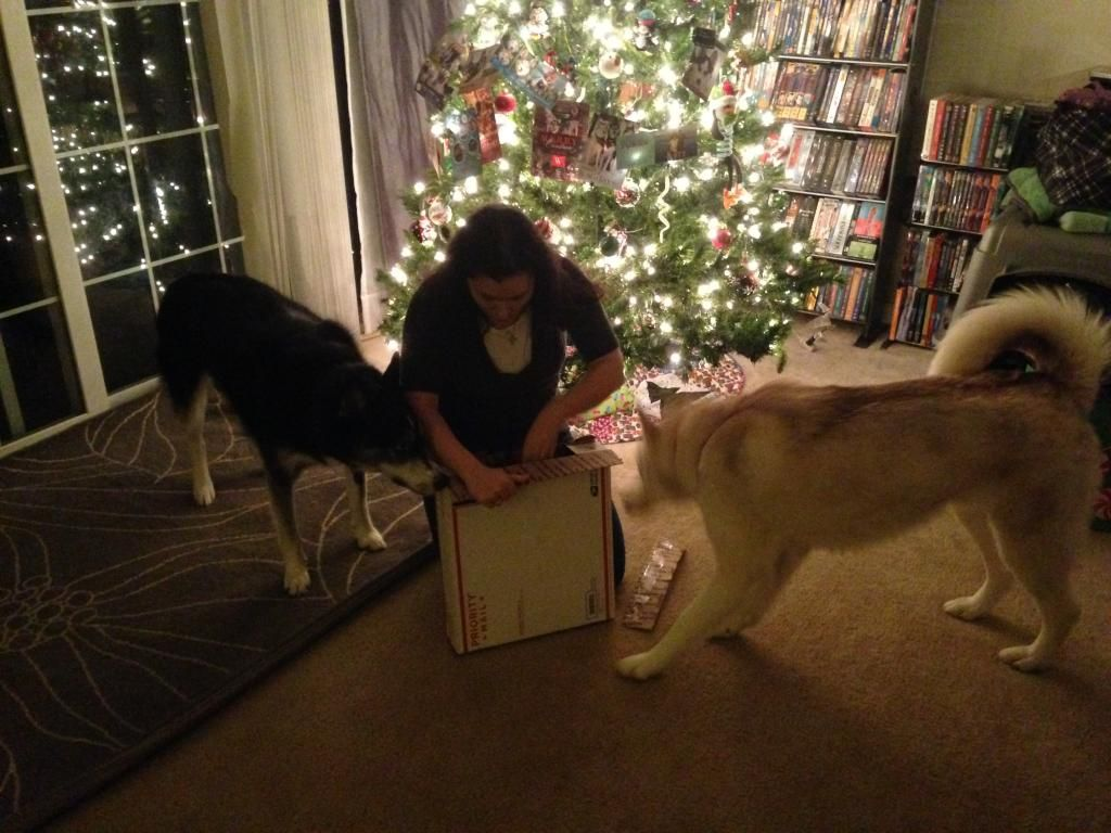 Secret Santa REVEAL! 2014 IMG_0659_zps8e98e3a8