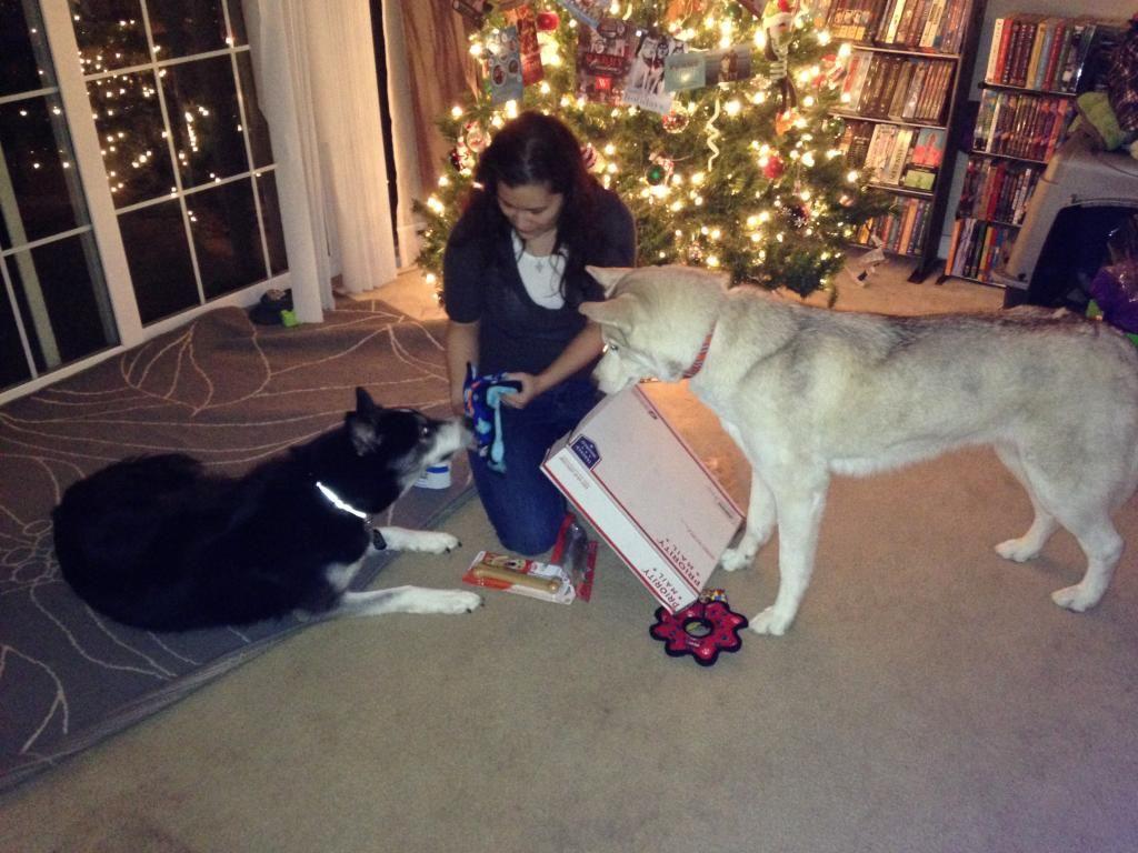 Secret Santa REVEAL! 2014 IMG_0663_zpsf85a3108